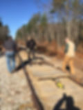 trail work 11-19-5.jpg