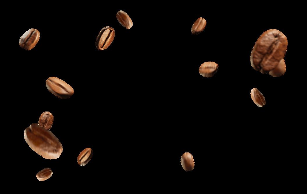 купить свежеобжаренный кофе в зернах