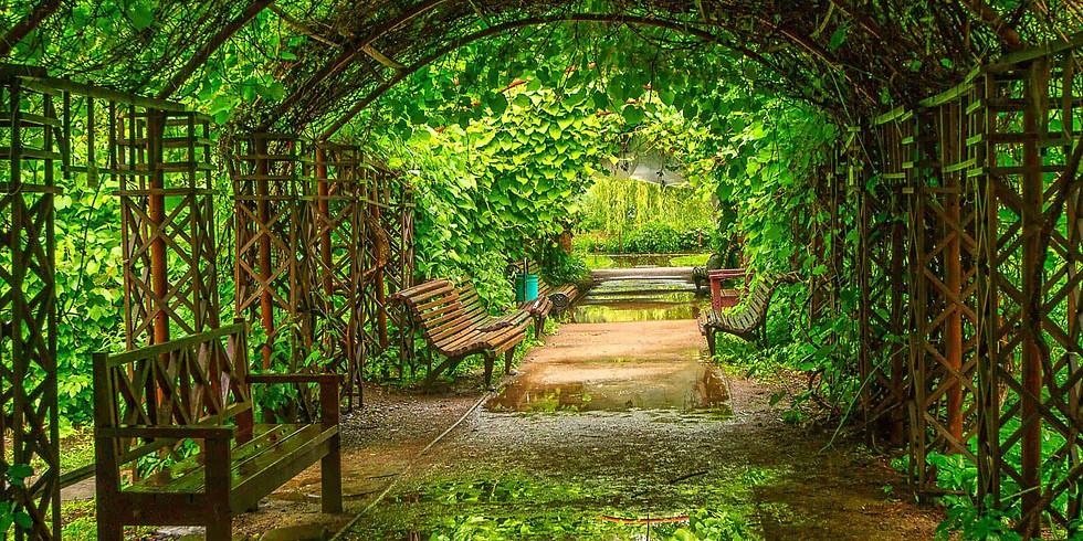 «Аптекарский огород» в ботанический сад к Петру I