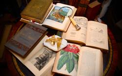Μεγάλη συλλογή απο βιβλία Ελληνικά