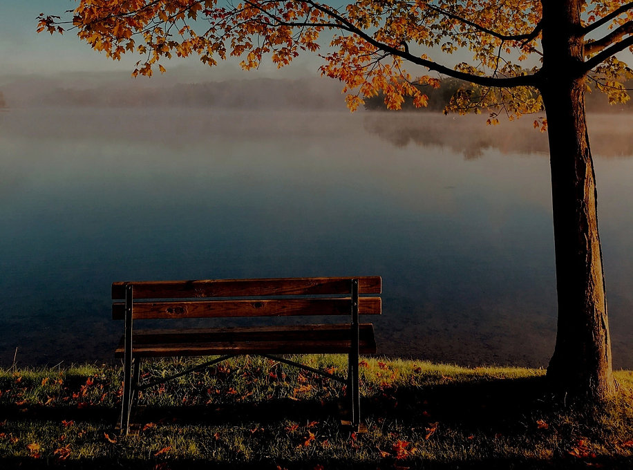 Bench%2525252520by%2525252520the%2525252520lake%2525252520on%2525252520an%2525252520autumn%25252525E