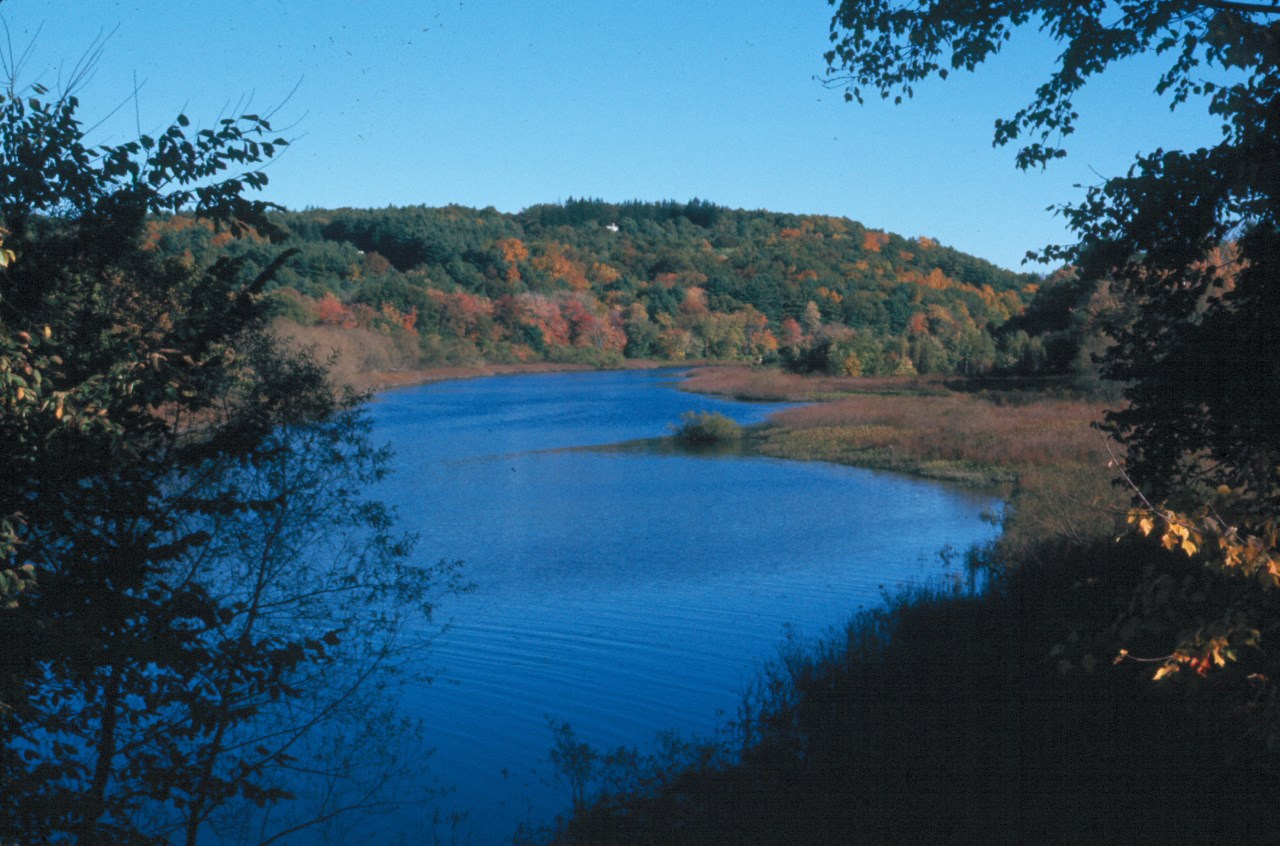 Sudbury River view