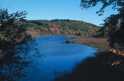 Sudbury River view