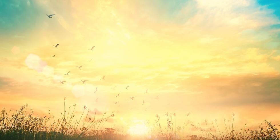 A Renewal of Spirit