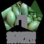 caper logo.png