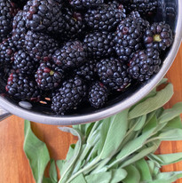 Have you tried our Blackberry-Sage Syrup?!  It's one of our most popular cocktail ingredients!