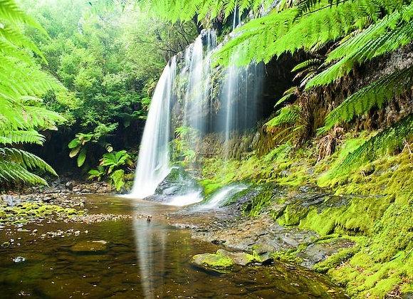 Russell Falls, Tasmania.