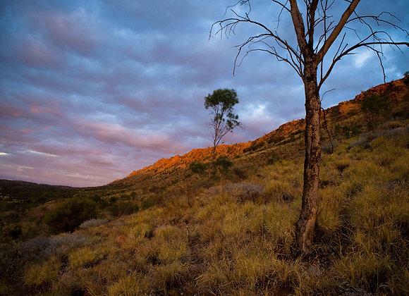 East Macdonnell Ranges, Alice Springs Australia.