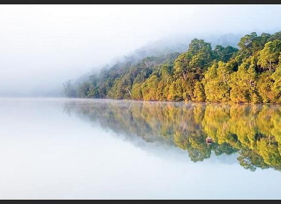 Pieman River, Tasmania.