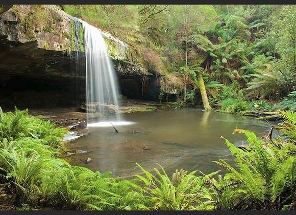 Waterfall Otways N.P, Victoria.