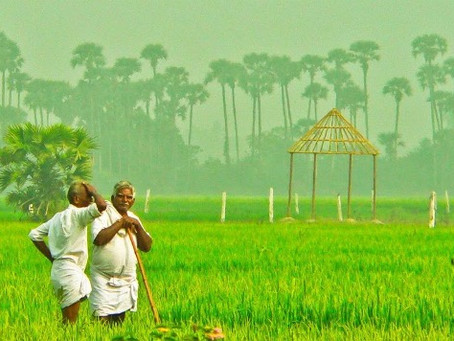 Farmers' Suicide: A Perpetual Concern in India