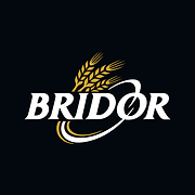 Logo-Bridor-CMJN.png