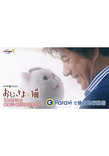 chirashi_qa.jpg