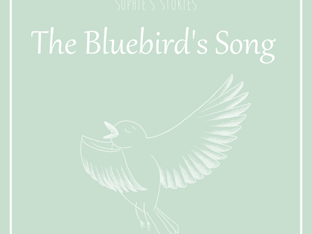 The Bluebird's Song- A Story For Self Care