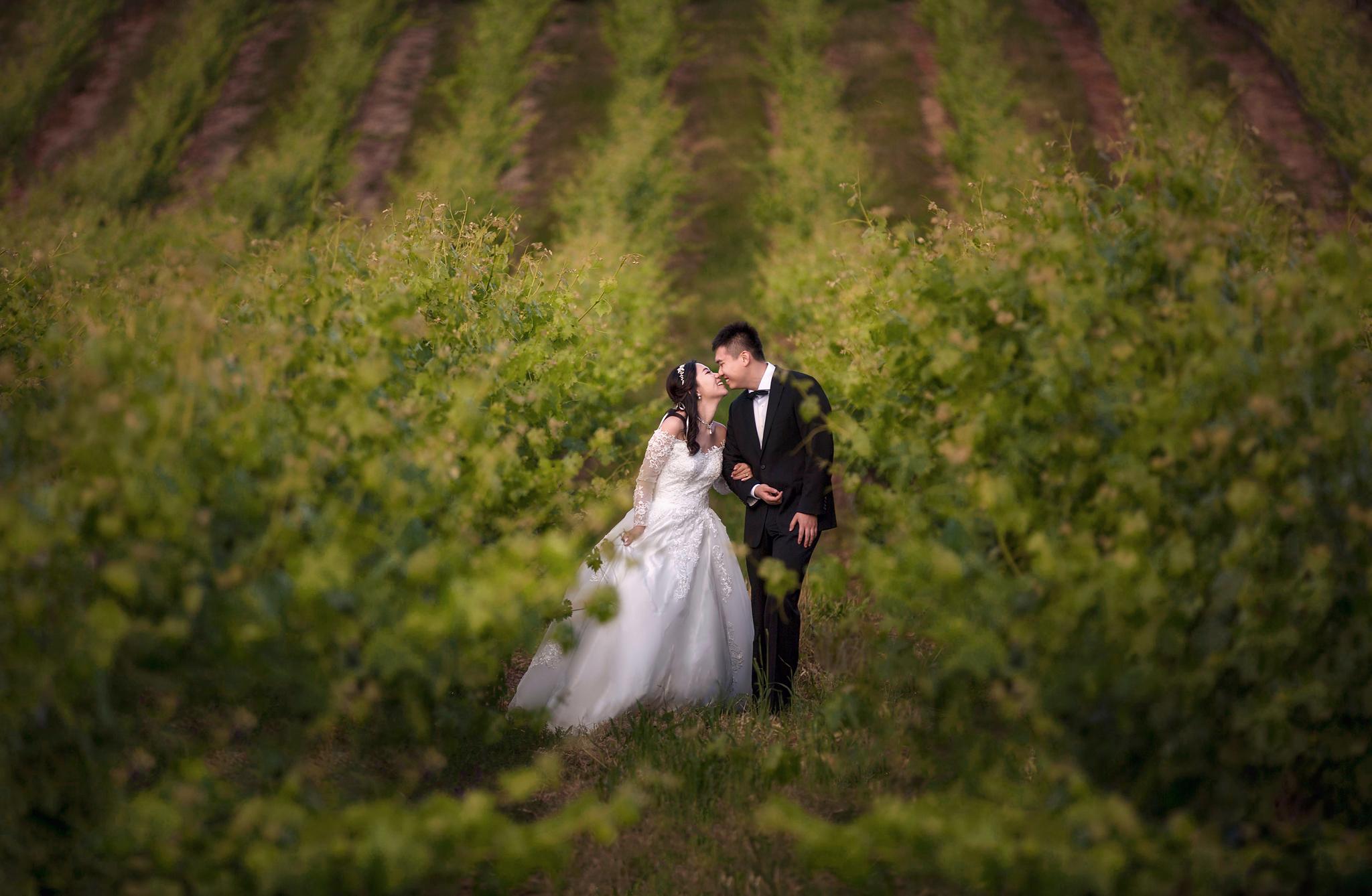 SUMMER AND HANYANG'S WEDDING