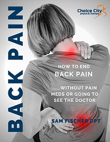 back pain cover-page-001.jpg