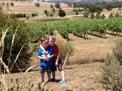 youngLukenHarry in vineyard