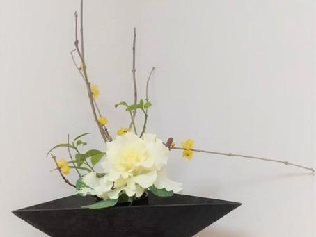 お花いろいろ