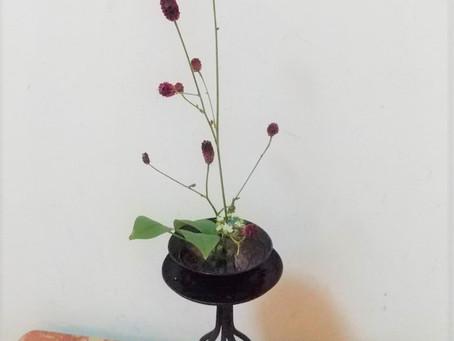 2階のお花