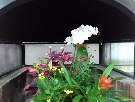 暖炉のお花