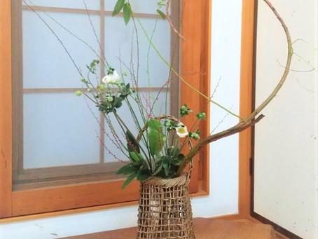 お座敷のお花
