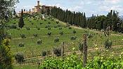 cb_castello_mezzogiorno_img_8124_0.jpg