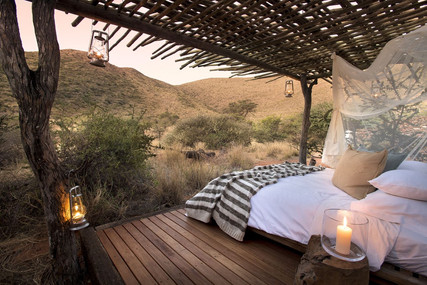 Enjoy a star bed experience in the wilderness