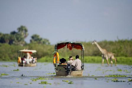 Boating safaris