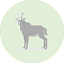 Sable Antelope icon.png