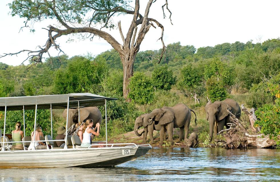 Land & Boat safaris