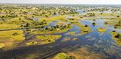 Okavango-Delta-Wetlands.jpeg