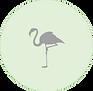flamingo icon.png