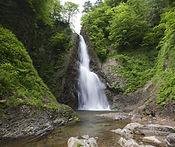 Shirakami Sanchi.jpg