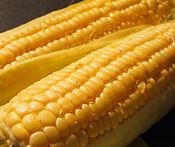 corn_menu01.JPG
