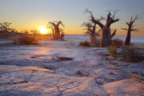 Surreal lunar landscapes of the Central Kalahari