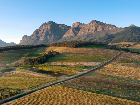 Admire incredible landscapes of the Cape Winelands