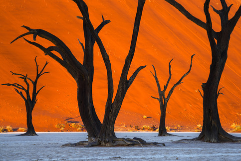 Marvel at some of the most otherworldly landscapes in the world