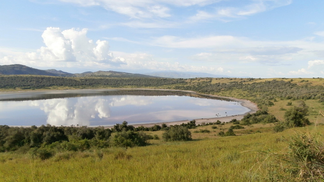 Marvel at incredible wildlife at the stunning crater lakes