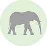 Elephant icon.png