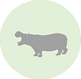 hippo icon.png