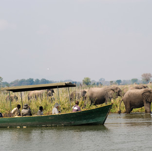 River safaris, game drives and Rhino sanctuary visit in Liwonde National Park
