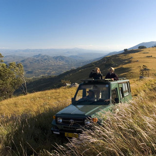 Game viewing in the Nyika Grasslands