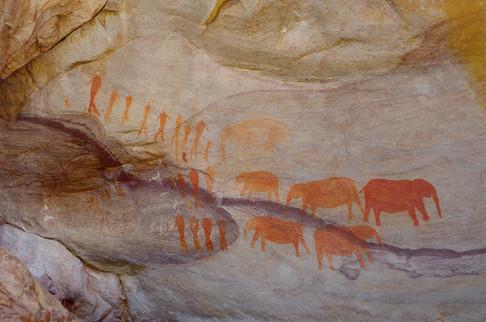 Discover the origins of the San Bushmen