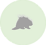 Porcupine icon.png