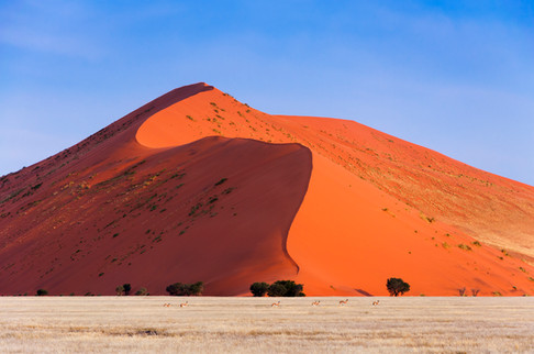 Witness some of the greatest sand dunes in the world