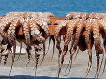 sundried-octopus-naoussa-paros-greece.jp