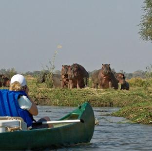 Canoe Safaris in Mana Pools National Park