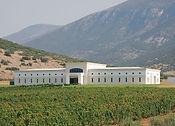Ktima Pavlidis Winery 2.jpg