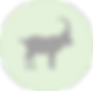 ibex icon.png