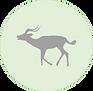 Impala icon.png